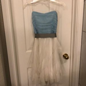 Blue and White Tulle Dress